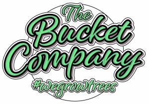 bucketcompanyinstaround